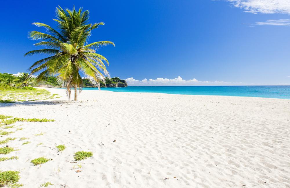 beach in barbados
