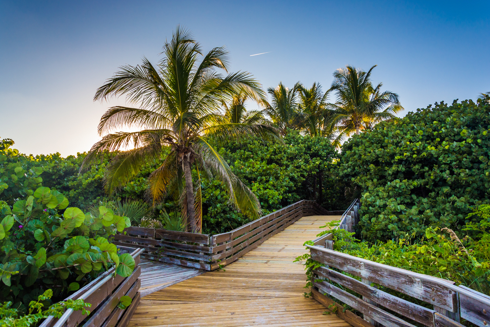 footpath trail in florida