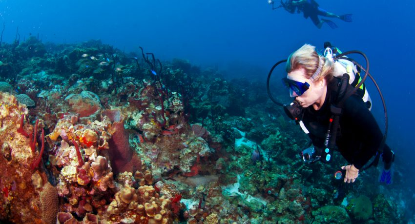 diver and photographer scuba diving in st lucia