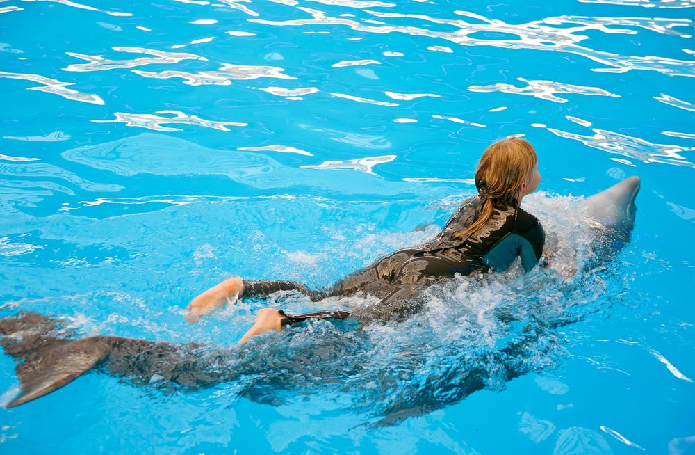 swimming-dolphins-dubai