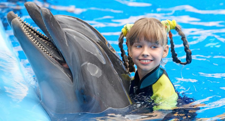 young child swimming with dolphin in orlando
