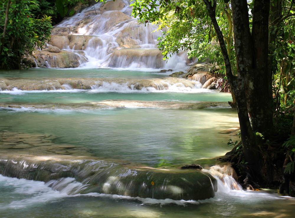 Jungle River Tubing in jamaica