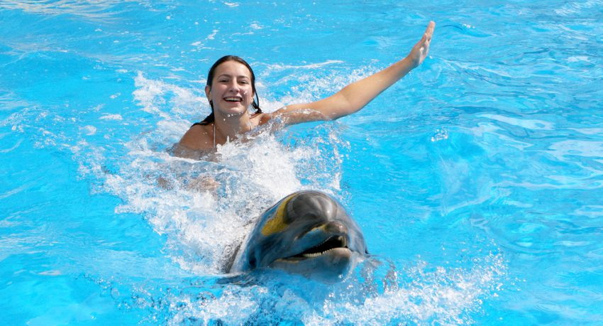 girl swimming with dolphin