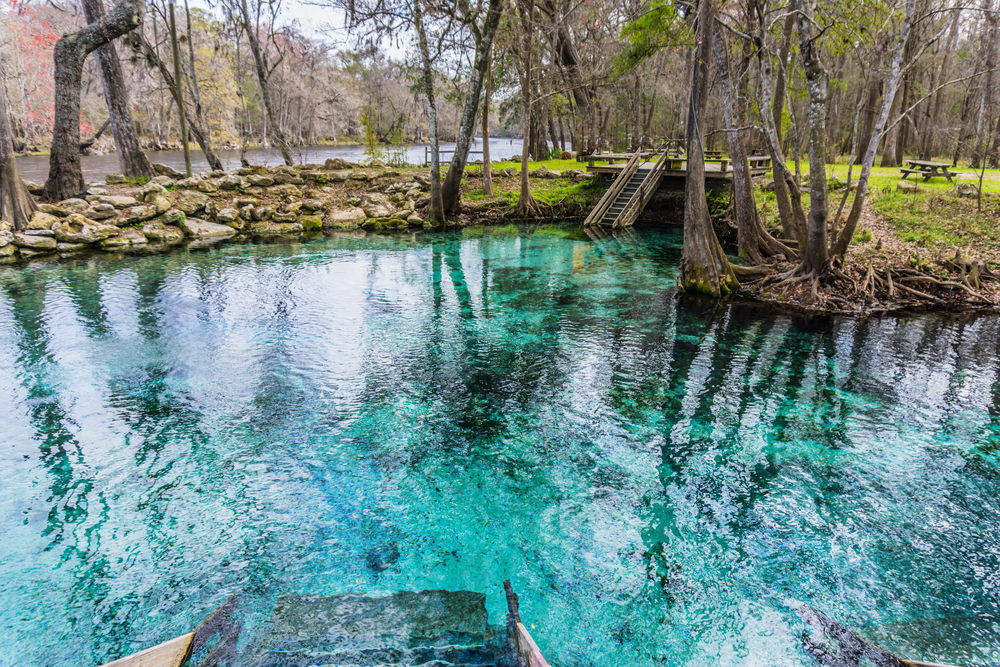 Madison Blue Spring State Park in Florida
