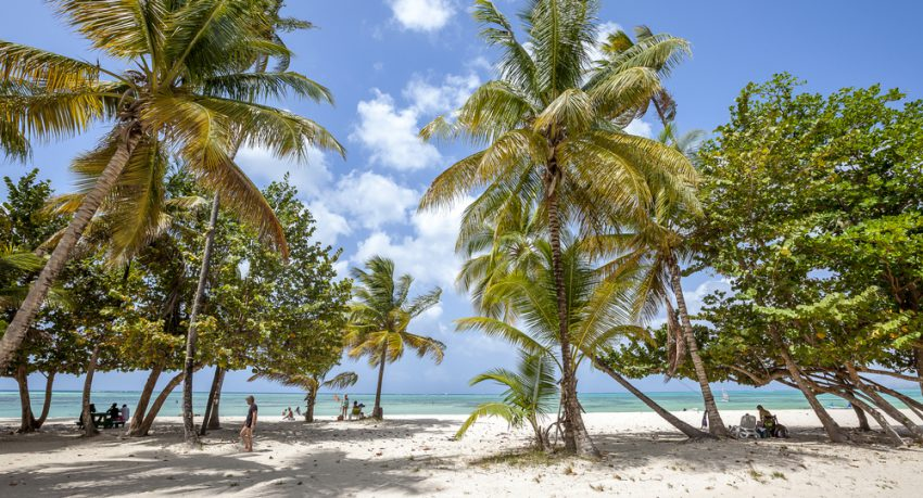 Top Hidden Bays and Beaches in Tobago by Holiday Genie