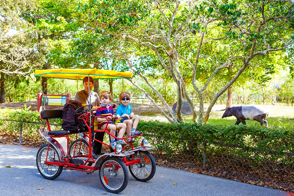 miami zoo with kids